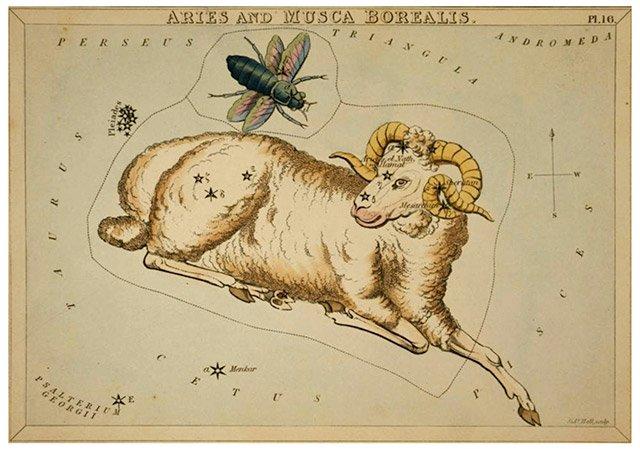 Portrait astrologique du Bélier ascendant Gémeaux